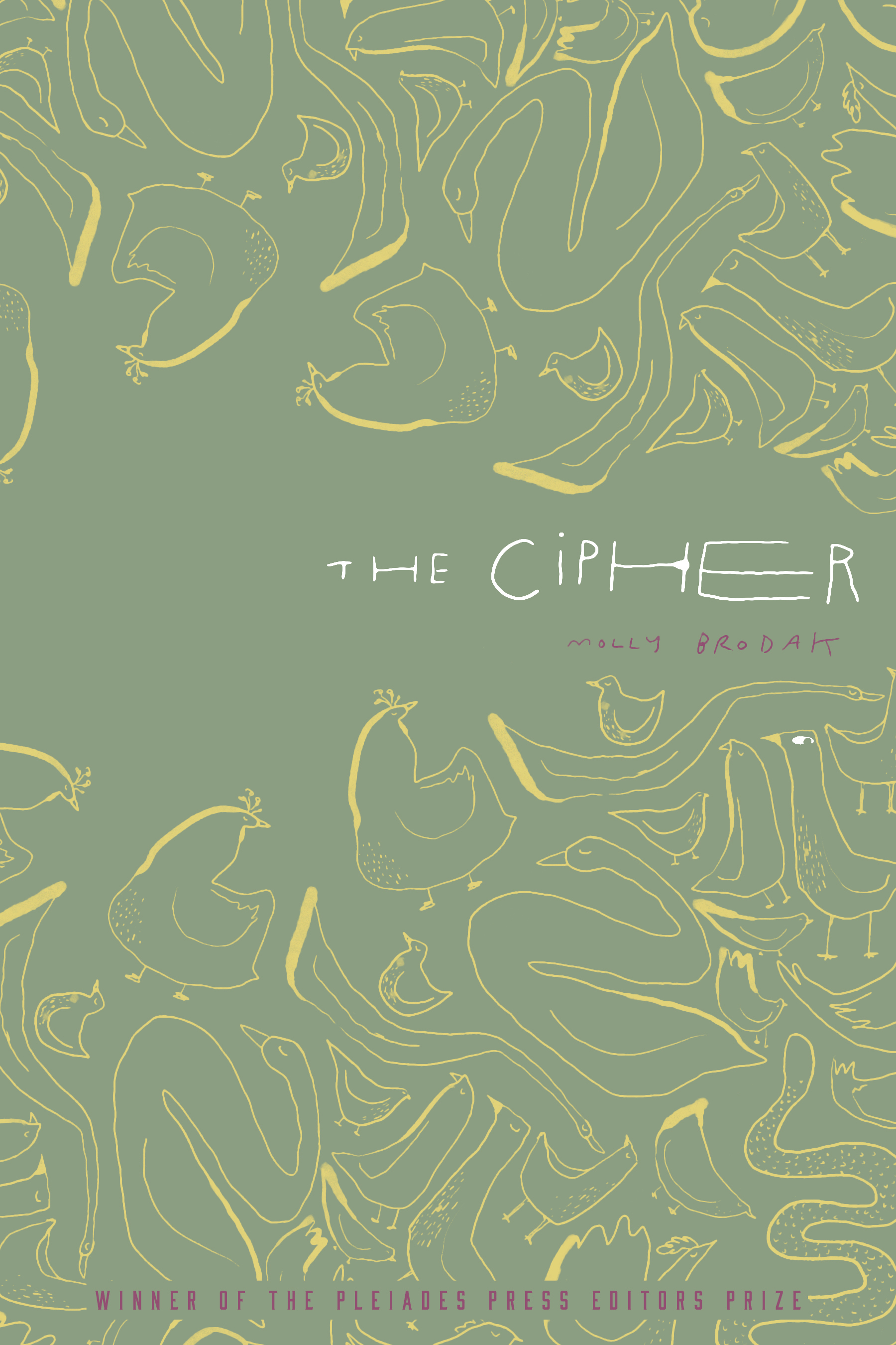 The Cipher cover